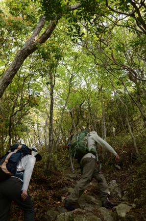 f:id:kurokoshusaru:20120514184537j:image
