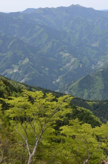 f:id:kurokoshusaru:20120516213610j:image