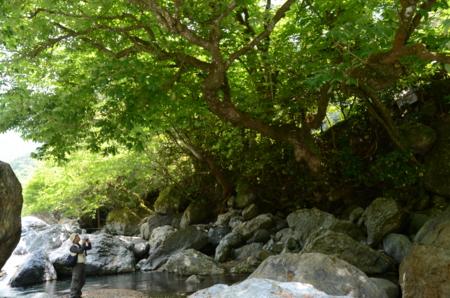 f:id:kurokoshusaru:20120602202618j:image