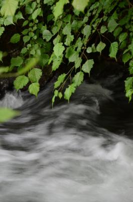 f:id:kurokoshusaru:20120717201811j:image