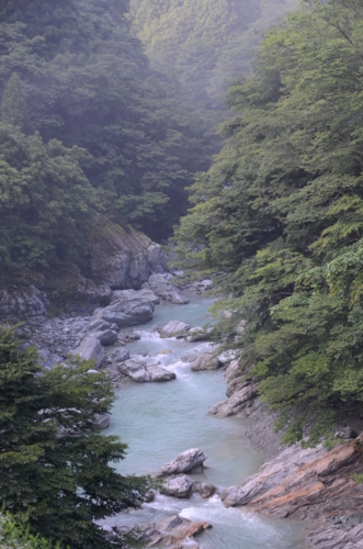 f:id:kurokoshusaru:20120729194509j:image