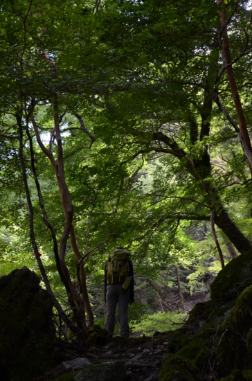 f:id:kurokoshusaru:20120808211008j:image