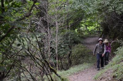 f:id:kurokoshusaru:20120811220221j:image