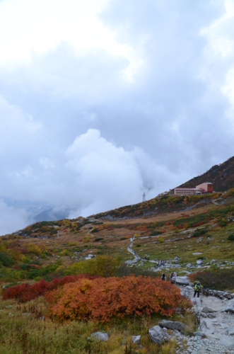 f:id:kurokoshusaru:20121008200416j:image