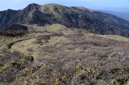 f:id:kurokoshusaru:20121113184118j:image