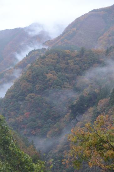 f:id:kurokoshusaru:20121119184323j:image
