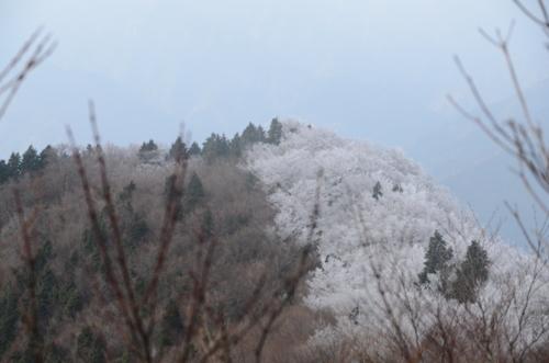 f:id:kurokoshusaru:20121225043050j:image