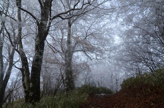 f:id:kurokoshusaru:20121226083343j:image