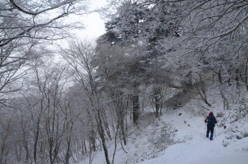 f:id:kurokoshusaru:20130110183028j:image
