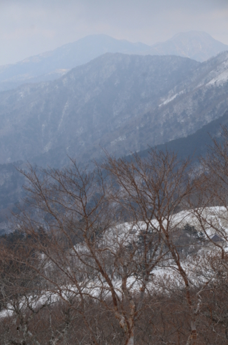 f:id:kurokoshusaru:20130115122024j:image