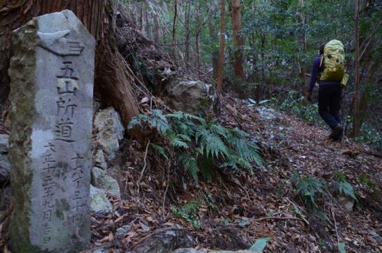 f:id:kurokoshusaru:20130127051312j:image