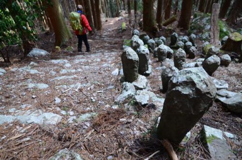 f:id:kurokoshusaru:20130131181941j:image