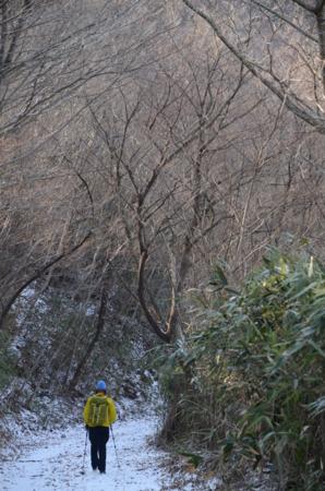 f:id:kurokoshusaru:20130226180412j:image
