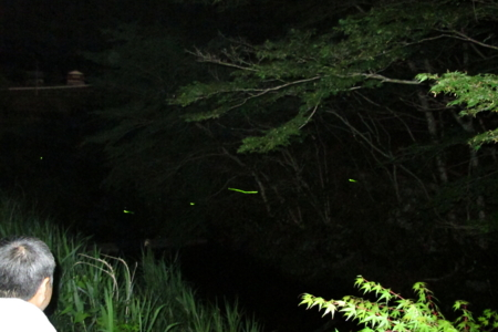 f:id:kurokoshusaru:20130627202110j:image