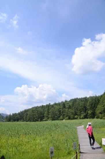 f:id:kurokoshusaru:20130724045522j:image