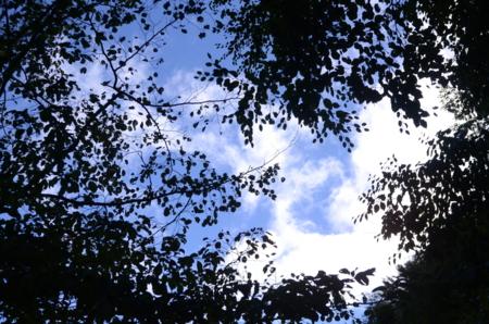 f:id:kurokoshusaru:20130908171443j:image