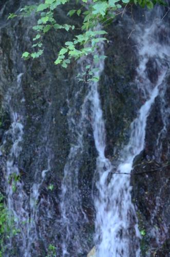 f:id:kurokoshusaru:20130908171915j:image