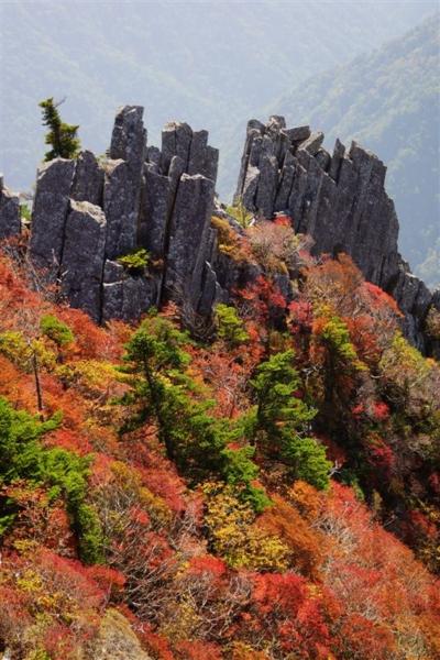 f:id:kurokoshusaru:20131019164953j:image