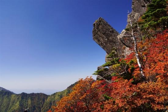 f:id:kurokoshusaru:20131019165151j:image