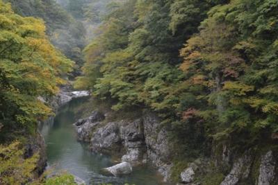 f:id:kurokoshusaru:20131025183714j:image