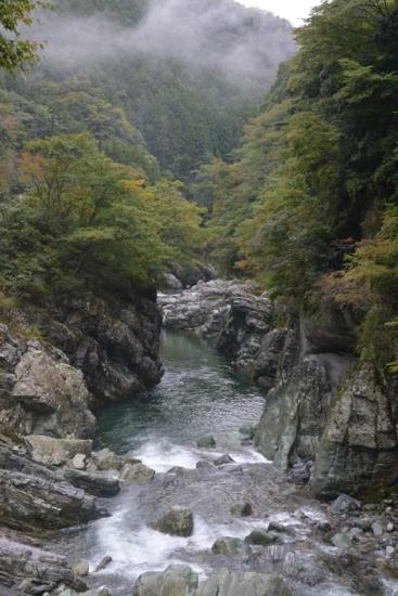 f:id:kurokoshusaru:20131025185046j:image