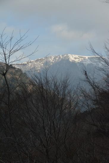 f:id:kurokoshusaru:20140203172756j:image