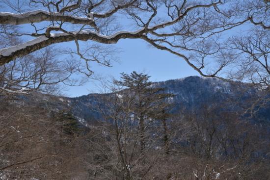 f:id:kurokoshusaru:20140318184322j:image