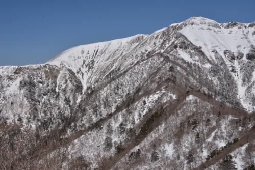 f:id:kurokoshusaru:20140319184806j:image