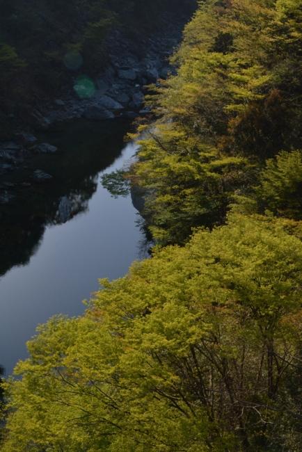 f:id:kurokoshusaru:20140427102447j:image