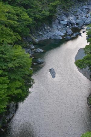 f:id:kurokoshusaru:20140531081422j:image