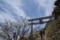 剱山本宮の鳥居