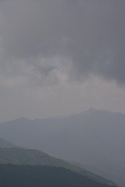 f:id:kurokoshusaru:20140705002144j:image