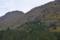 紅葉谷の森