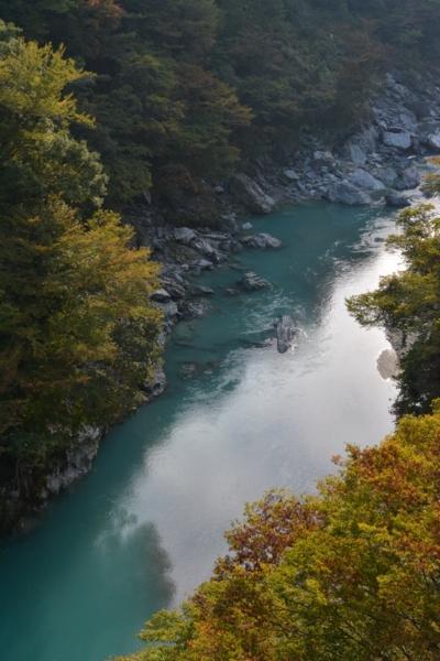 f:id:kurokoshusaru:20141020184549j:image