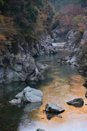 f:id:kurokoshusaru:20141110120357j:image