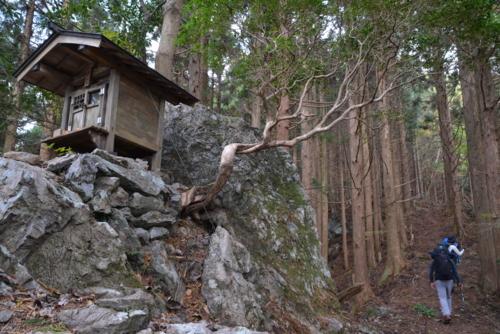 f:id:kurokoshusaru:20141120181936j:image