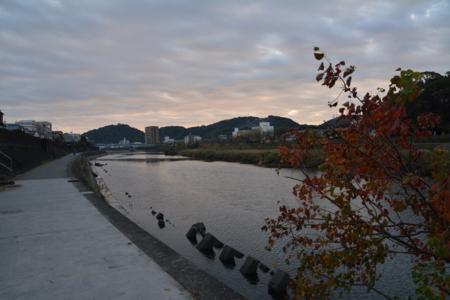 f:id:kurokoshusaru:20141202183655j:image