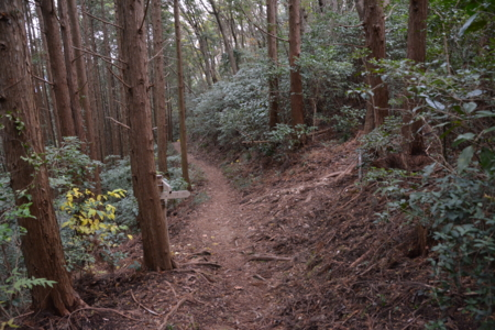 f:id:kurokoshusaru:20141206054645j:image