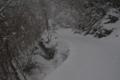 静かな林道