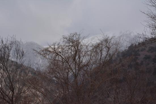 f:id:kurokoshusaru:20150201172231j:image