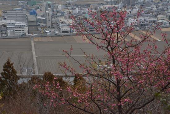 f:id:kurokoshusaru:20150224202116j:image