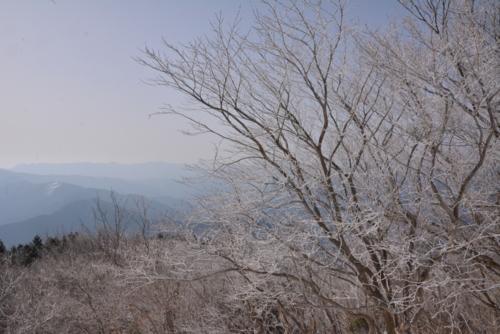f:id:kurokoshusaru:20150303183819j:image