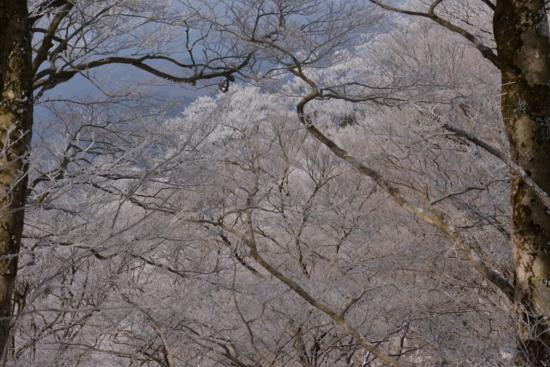 f:id:kurokoshusaru:20150303185020j:image