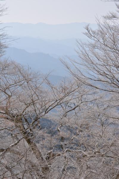 f:id:kurokoshusaru:20150303185343j:image