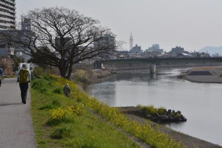 f:id:kurokoshusaru:20150324185841j:image