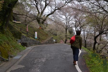 f:id:kurokoshusaru:20150406185441j:image