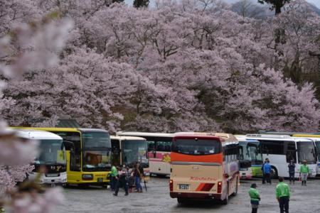f:id:kurokoshusaru:20150414185505j:image