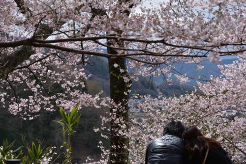 f:id:kurokoshusaru:20150414191025j:image