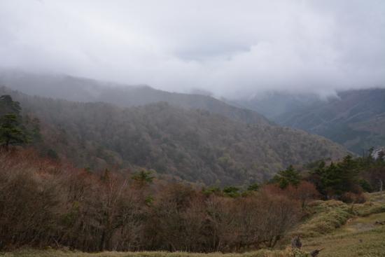 f:id:kurokoshusaru:20150502181256j:image