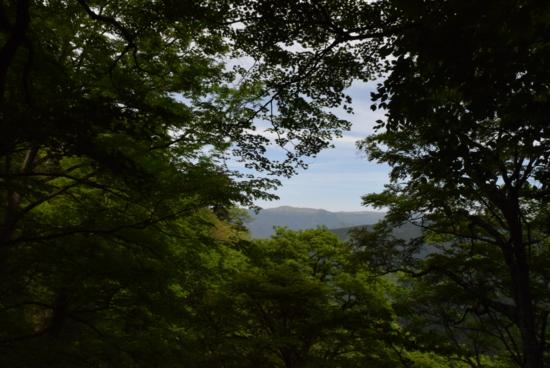 f:id:kurokoshusaru:20150521194343j:image